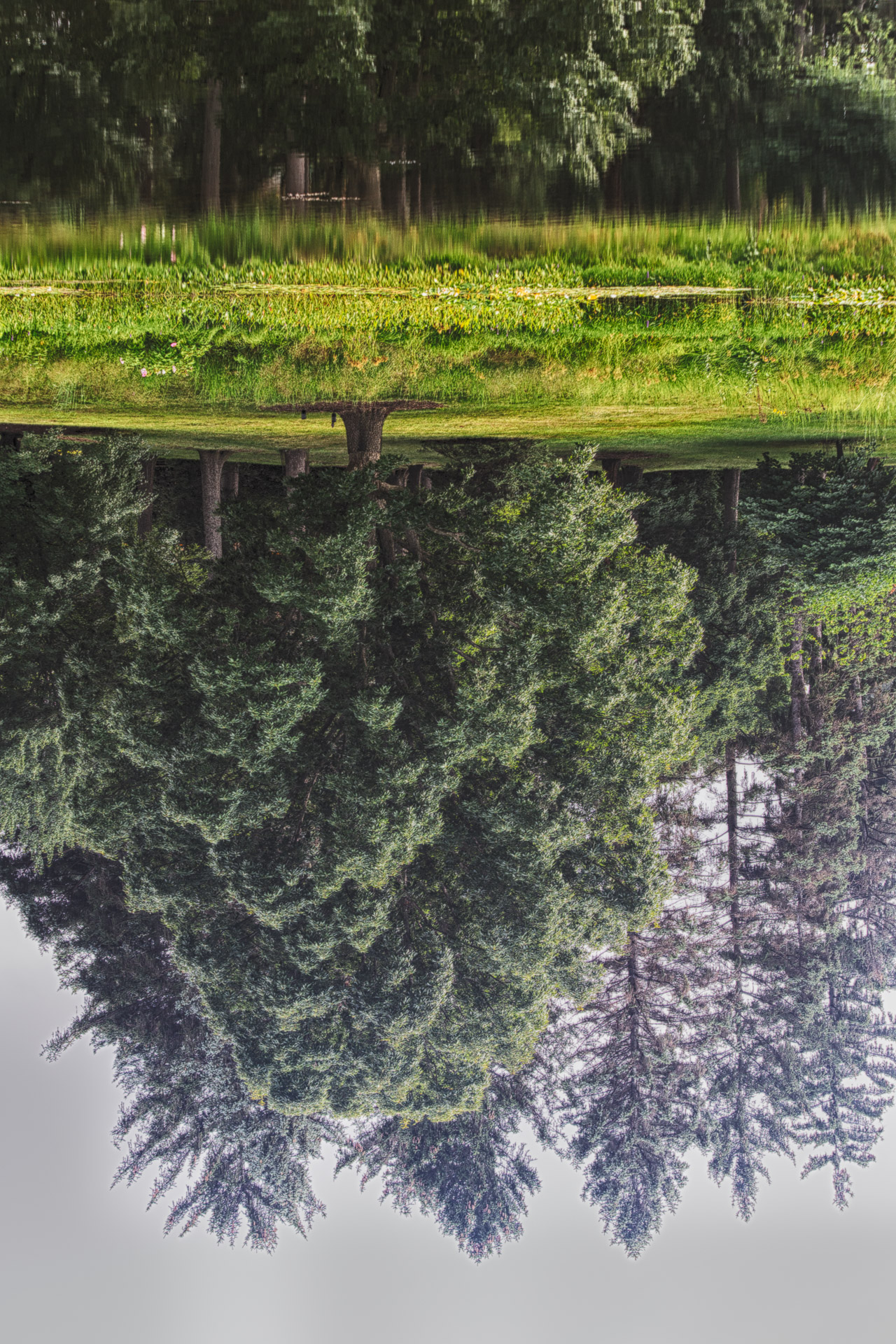 Change Your Perspective – Reflect