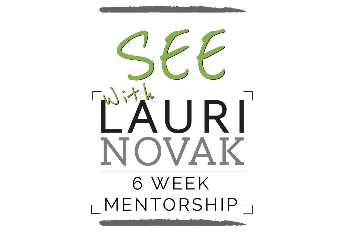 6-Week See! Mentorship Starting in February