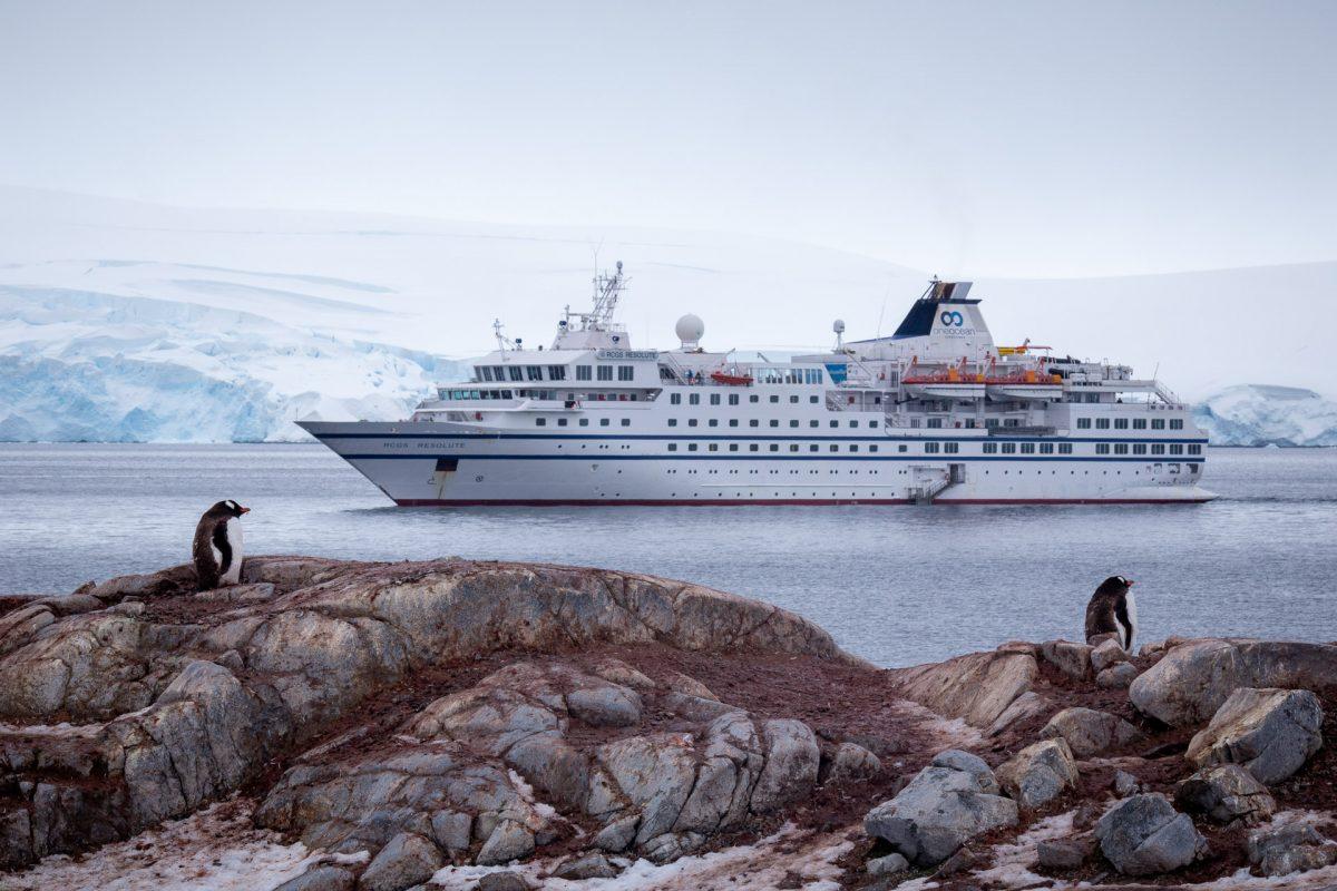 Antarctic Adventure – Day 8