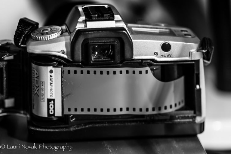 National Camera Day – June 29th